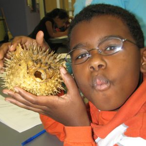 Boy With Puffer Fish 2