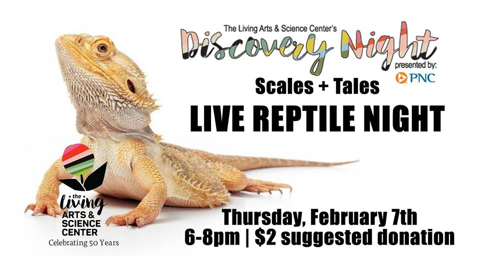 Discovery Night: Scales + Tales – Live Reptile Night