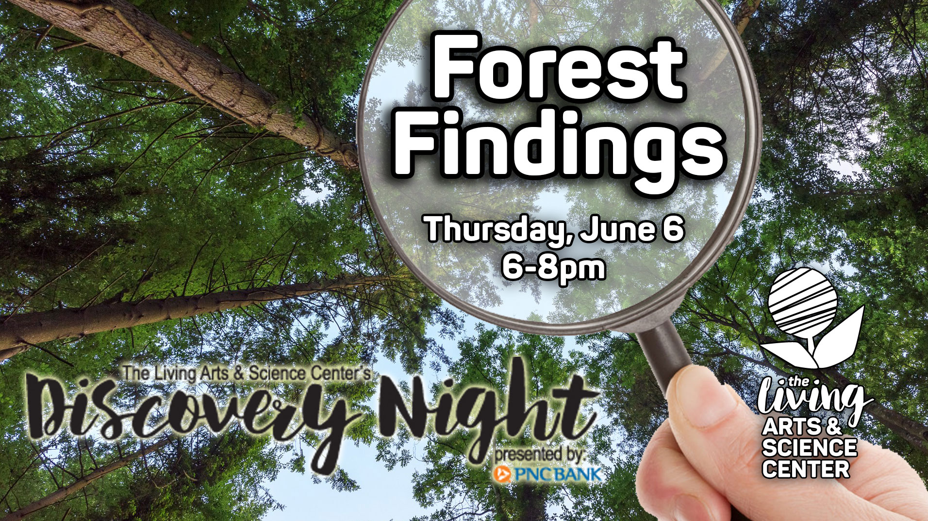 Discovery Night: Forest Findings