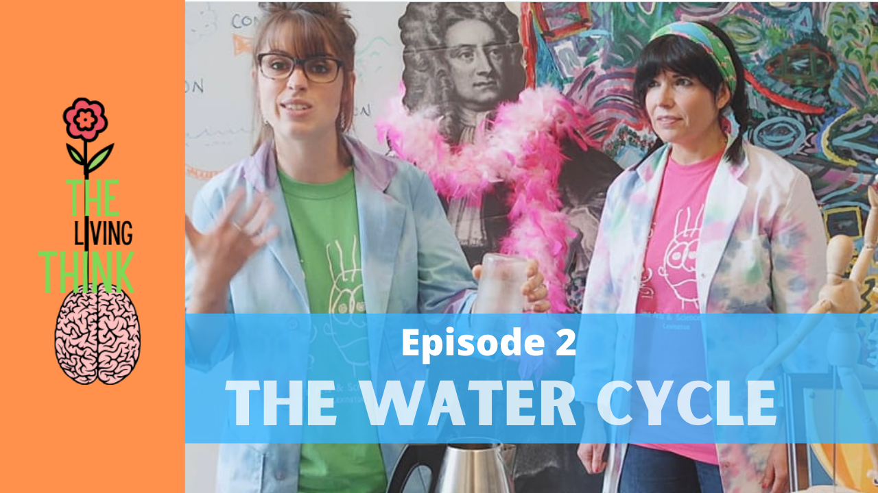 The Living Think: Episode 2 – The Water Cycle
