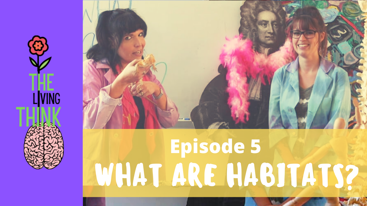 The Living Think: Episode 5 – What Are Habitats?